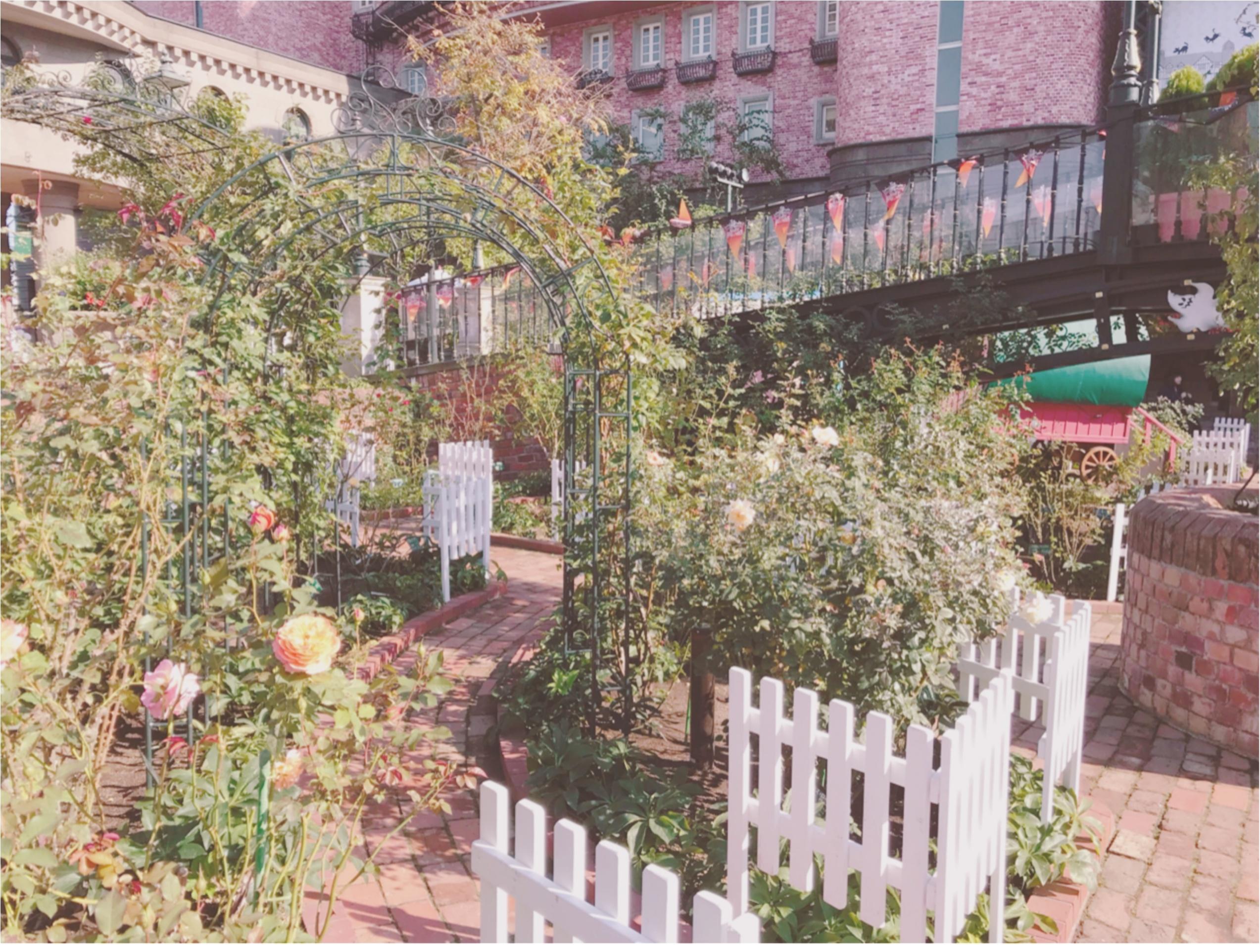 北海道旅行♡白い恋人パークがフォトジェニックで可愛い♡_4