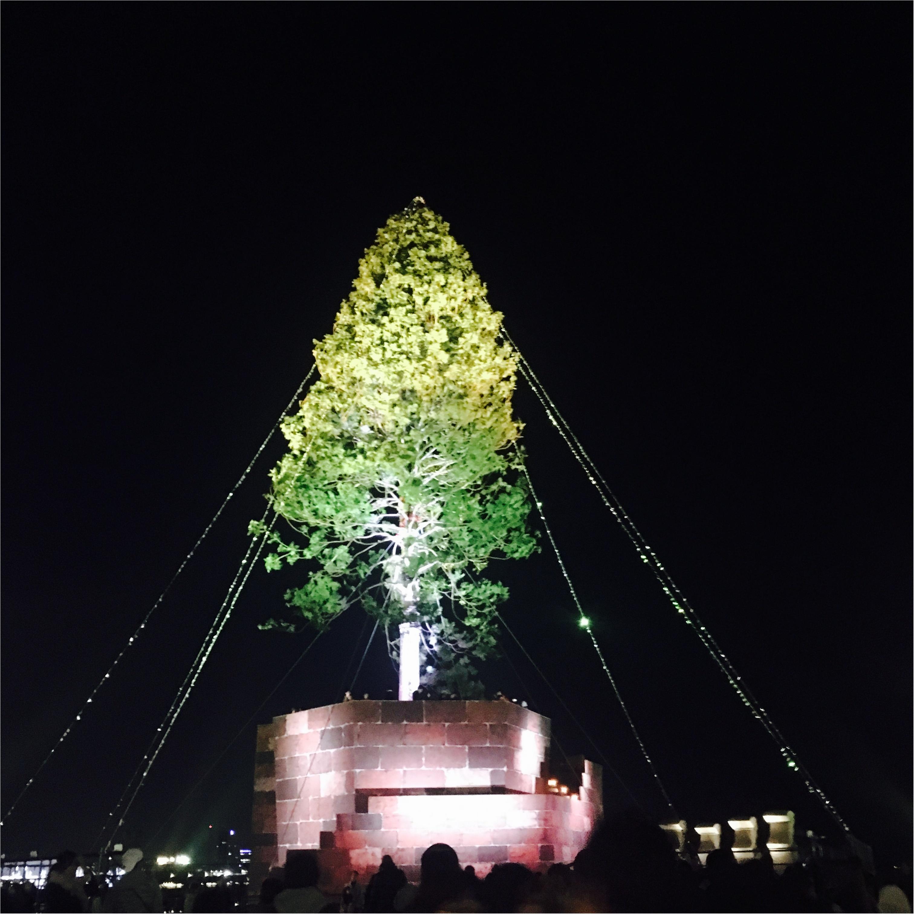 【神戸】で≪世界一高いクリスマスツリー≫が見れちゃうスポット!とってもオススメです!_6