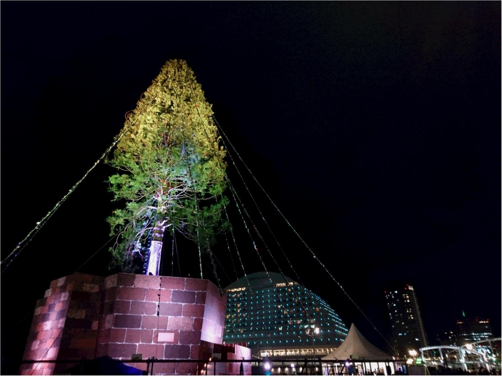 兵庫県は今、神戸がホットスポット☆ 開港150周年&世界一のクリスマスツリー ☆_2
