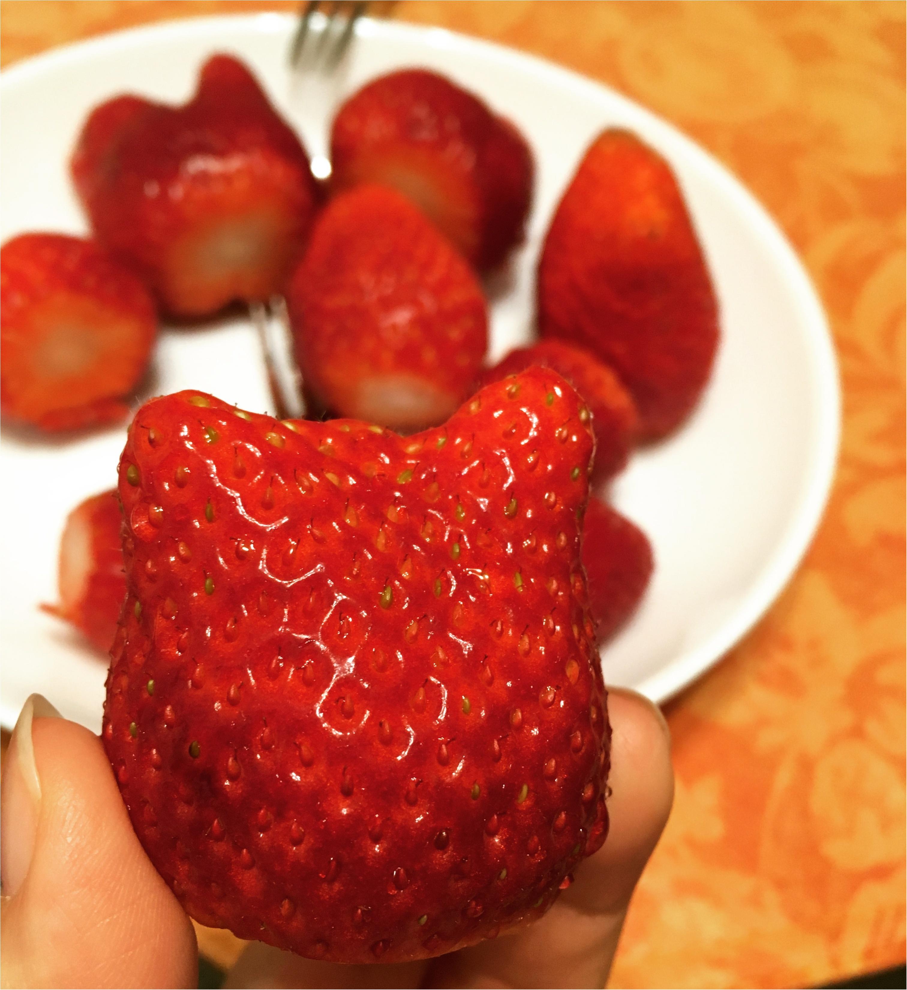 好きなイチゴの品種を発見!!めちゃめちゃおおぶり章姫サマ。_4