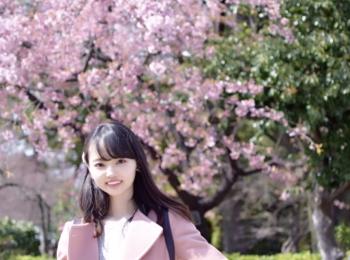 【名古屋】名古屋城でお花見!!名古屋城春まつり【桜】