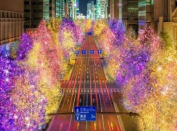 大阪イルミネーション2019おすすめ3選! photoGallery