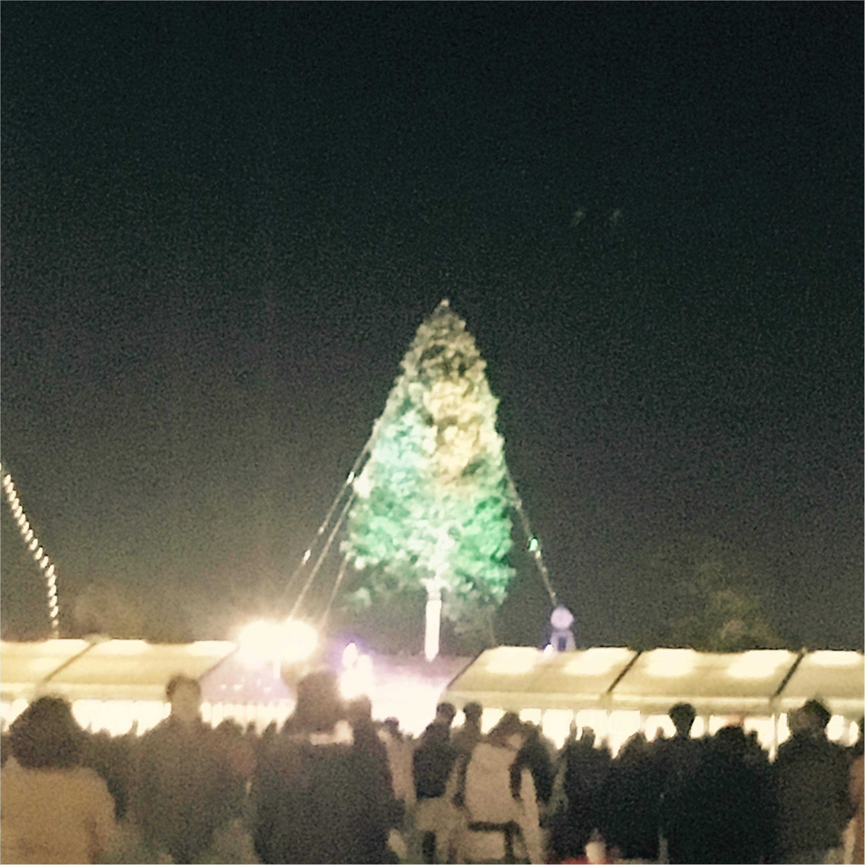 【神戸】で≪世界一高いクリスマスツリー≫が見れちゃうスポット!とってもオススメです!_3