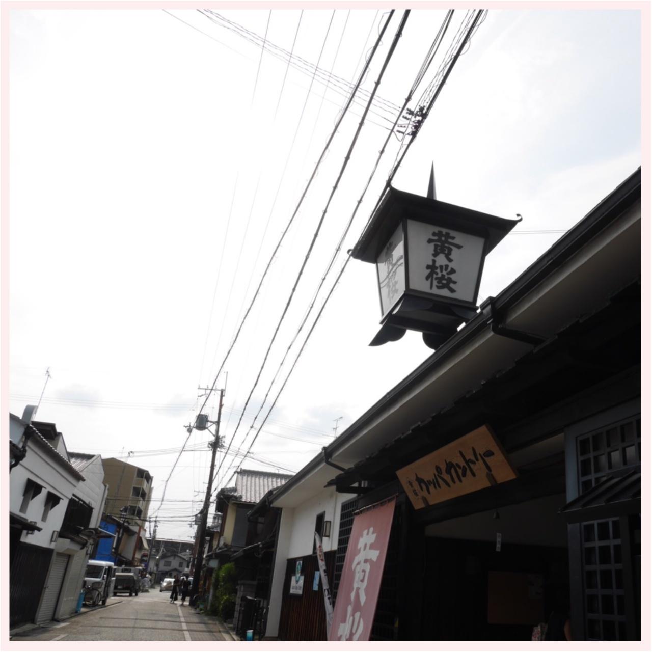 京都伏見 日本酒酒蔵めぐり _7