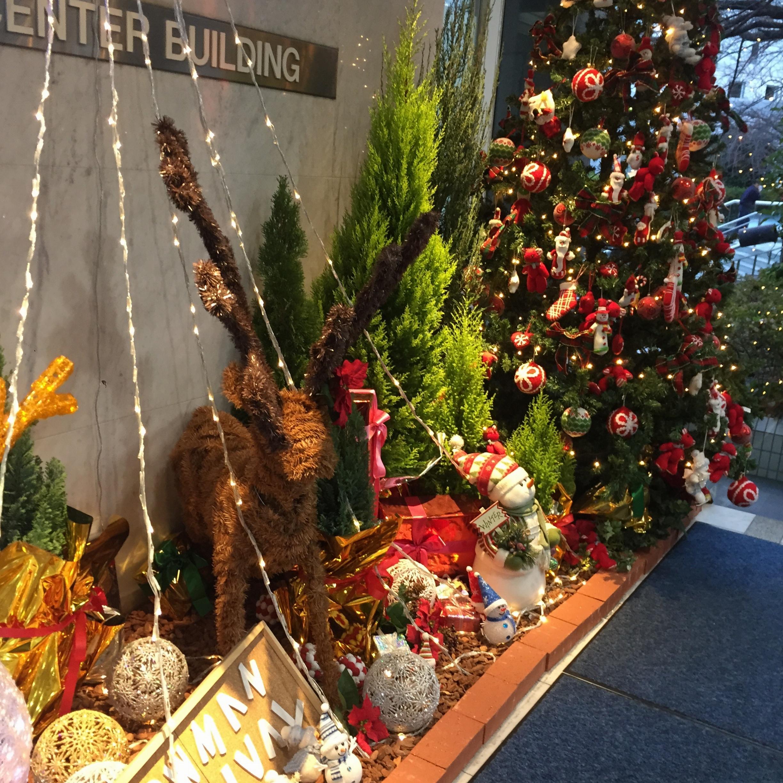 Xmas♡クリスマスツリー巡り♡_4