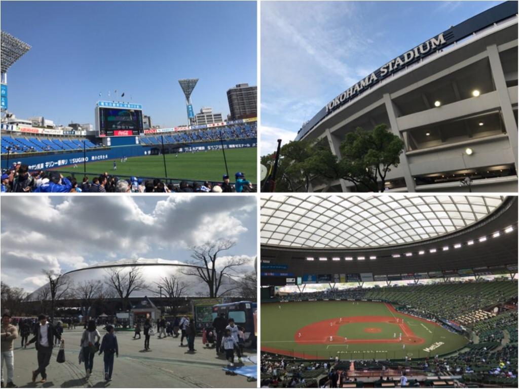 【スタジアムグルメ】プロ野球を観に行こう!最近の野球場はテーマパーク!?楽しい、美味しい、球場グルメをご紹介★_1