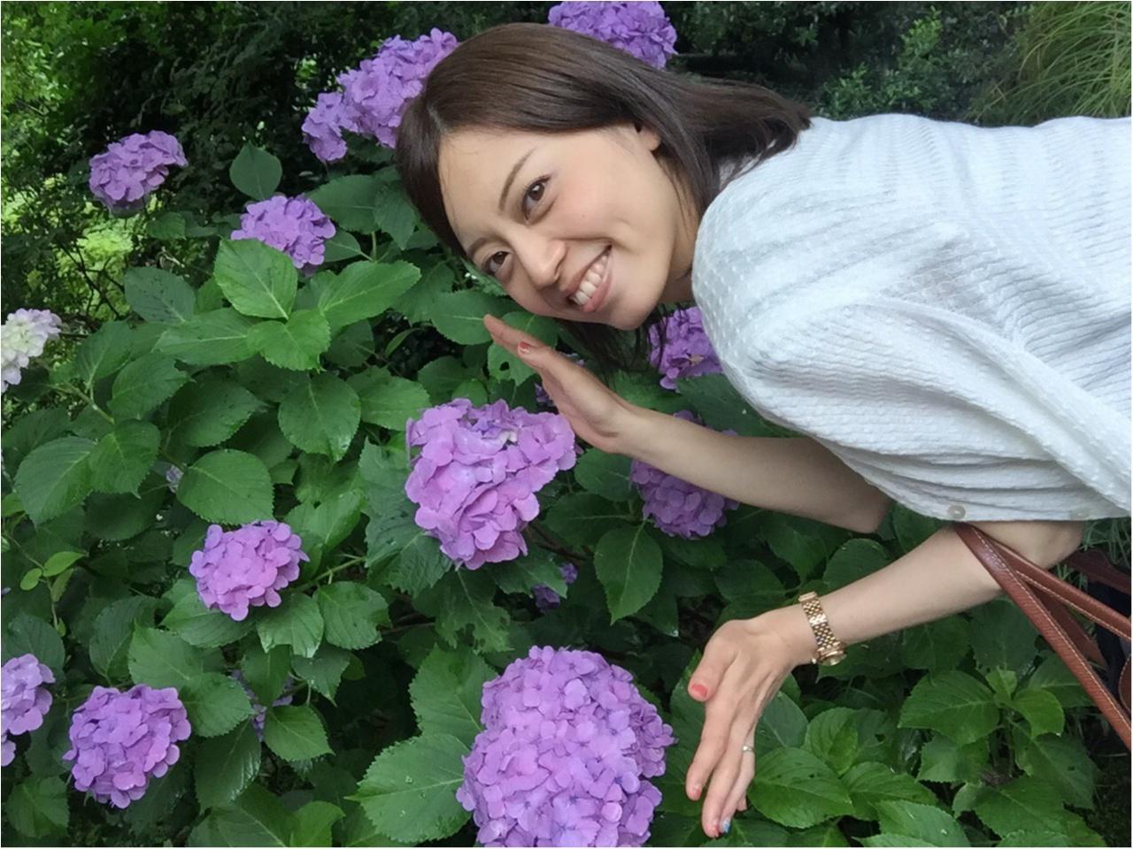 【箱根旅】綺麗すぎる紫陽花に思わず途中下車*写真を撮るなら絶対ココ!_4