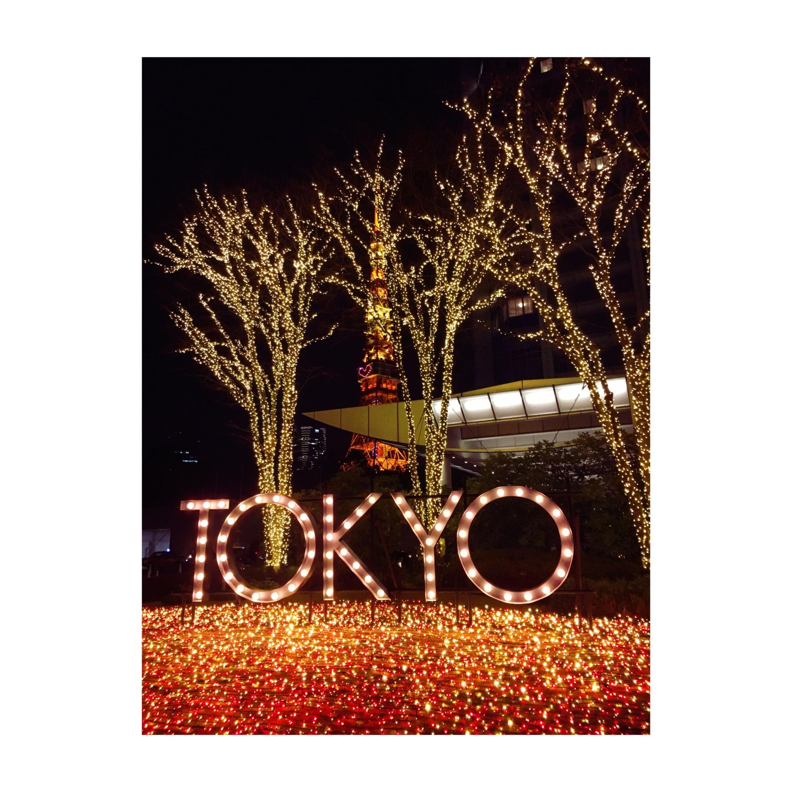 《金曜夜集合★》東京タワーの目の前!ザ・プリンスパークタワー東京で【ホテル女子会】をしてきました❤️_2