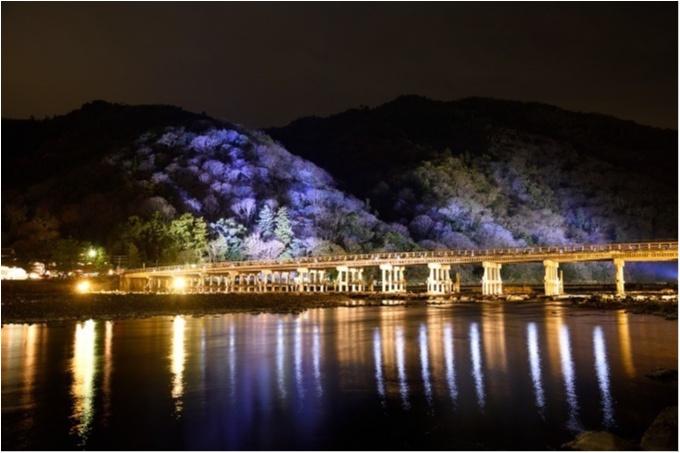 """大阪城ナイトウォーク「サクヤルミナ」も、「京都・嵐山花灯路-2018」も行きたすぎる! 関西の""""幻想的な夜""""が気になる♡_2_1"""