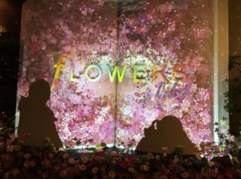 日本一早いお花見!?FLOWERS by NAKEDに行ってきました♡