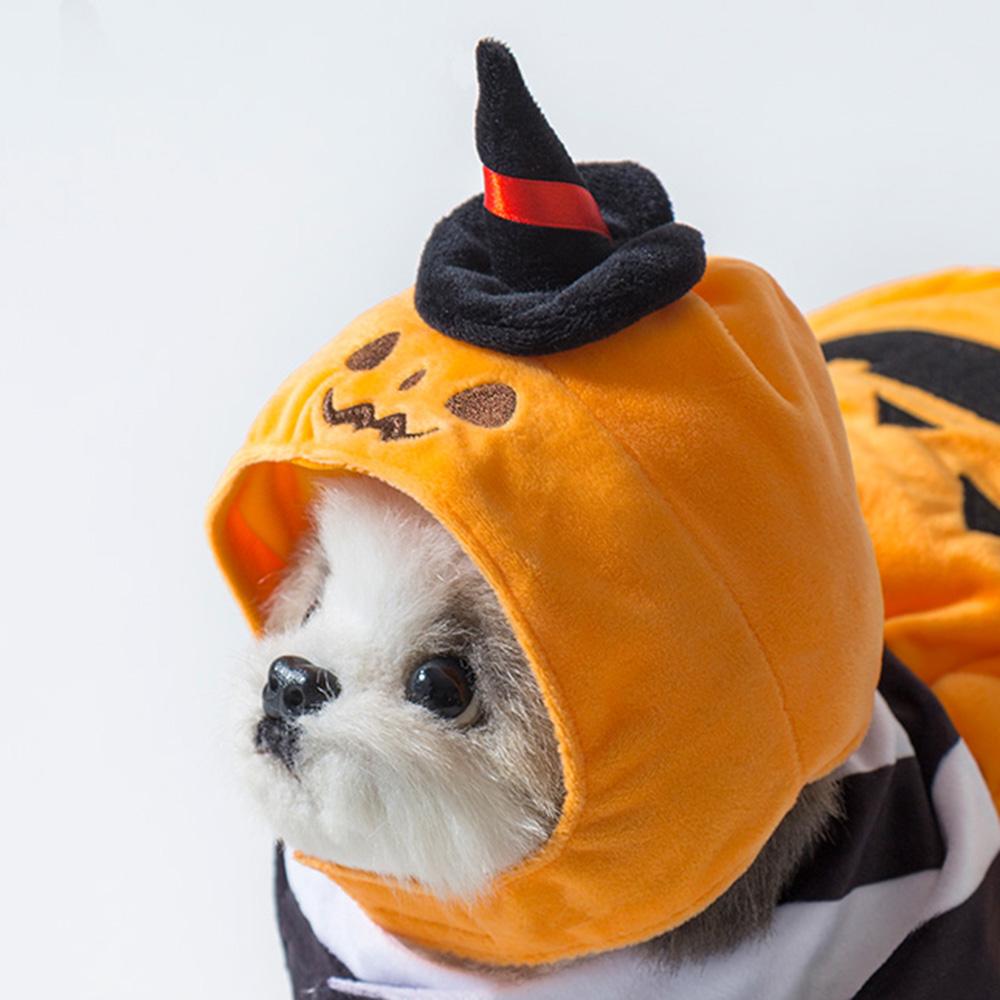 愛する犬・猫と楽しむハロウィン♡ 『3COINS』で買えるおすすめペットコスプレ8選_4