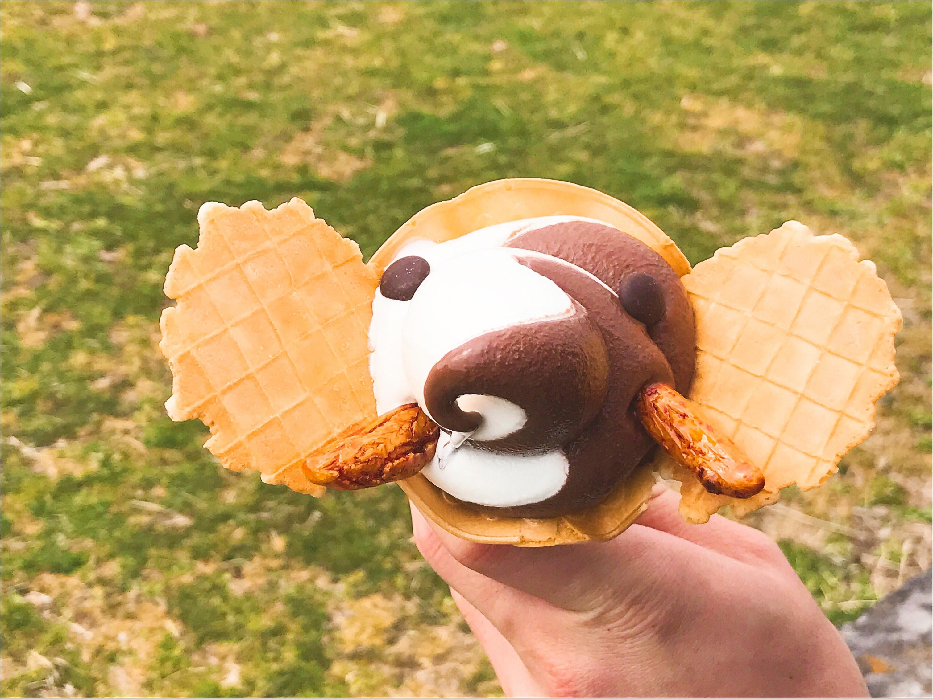 これを見たら食べたくなる‼︎『ゾウノハナソフトクリーム』って知ってる?_5