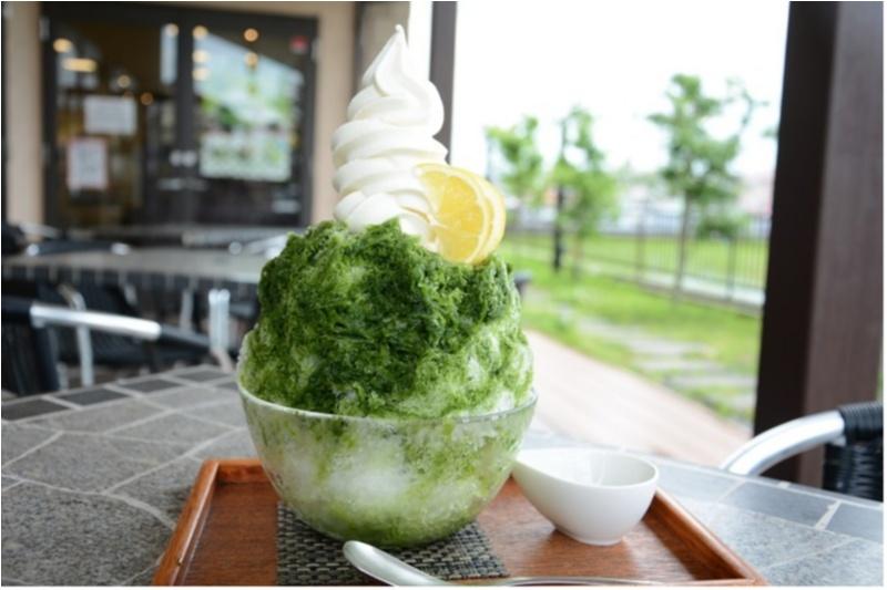 静岡県でぜったいに食べておきたいお茶かき氷 記事 Photo Gallery_1_3