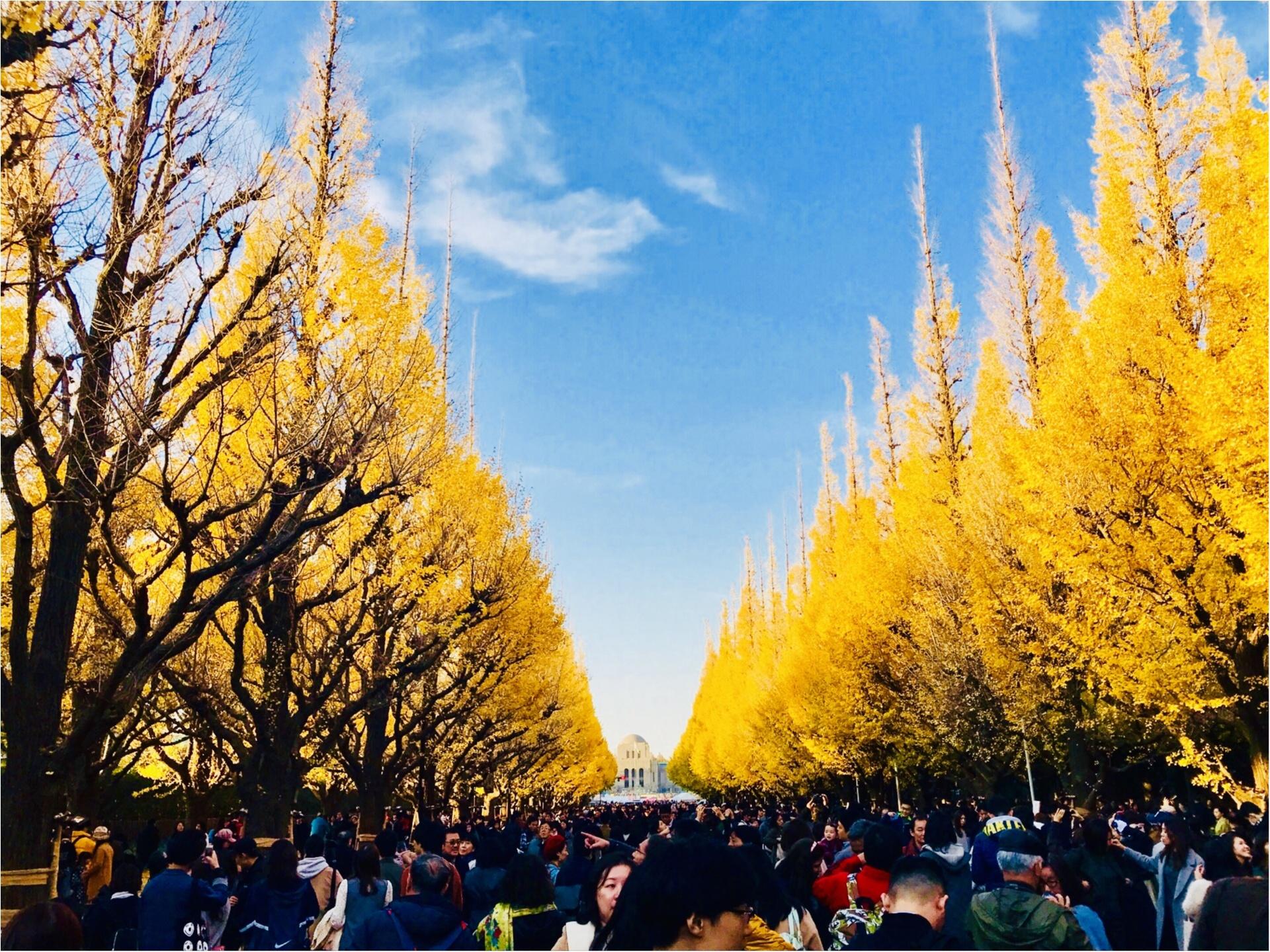 【紅葉スポット】美しすぎる黄色のトンネル《神宮外苑イチョウ並木》今が見頃です♡_1