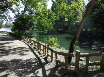 【吉祥寺井の頭公園】ひさしぶりに歩いてきました