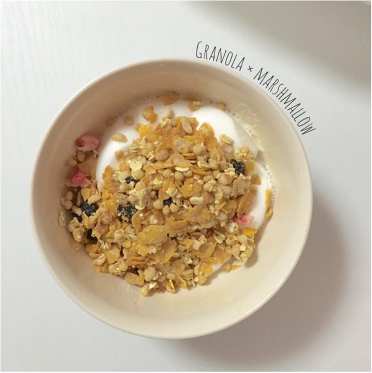 【FOOD】\愛ちあんCafe ♥︎/簡単!忙しい朝、サクッと栄養欲しいから。食物繊維たっぷりグラノーラバーの作り方_6