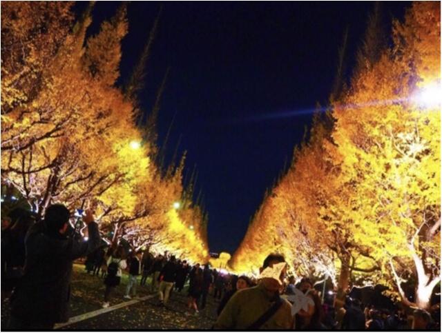 【紅葉スポット】美しすぎる黄色のトンネル《神宮外苑イチョウ並木》今が見頃です♡_4