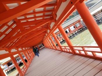 【広島旅行】2泊3日★呉・広島市内・宮島で食い倒れ旅♡もちろん観光も!