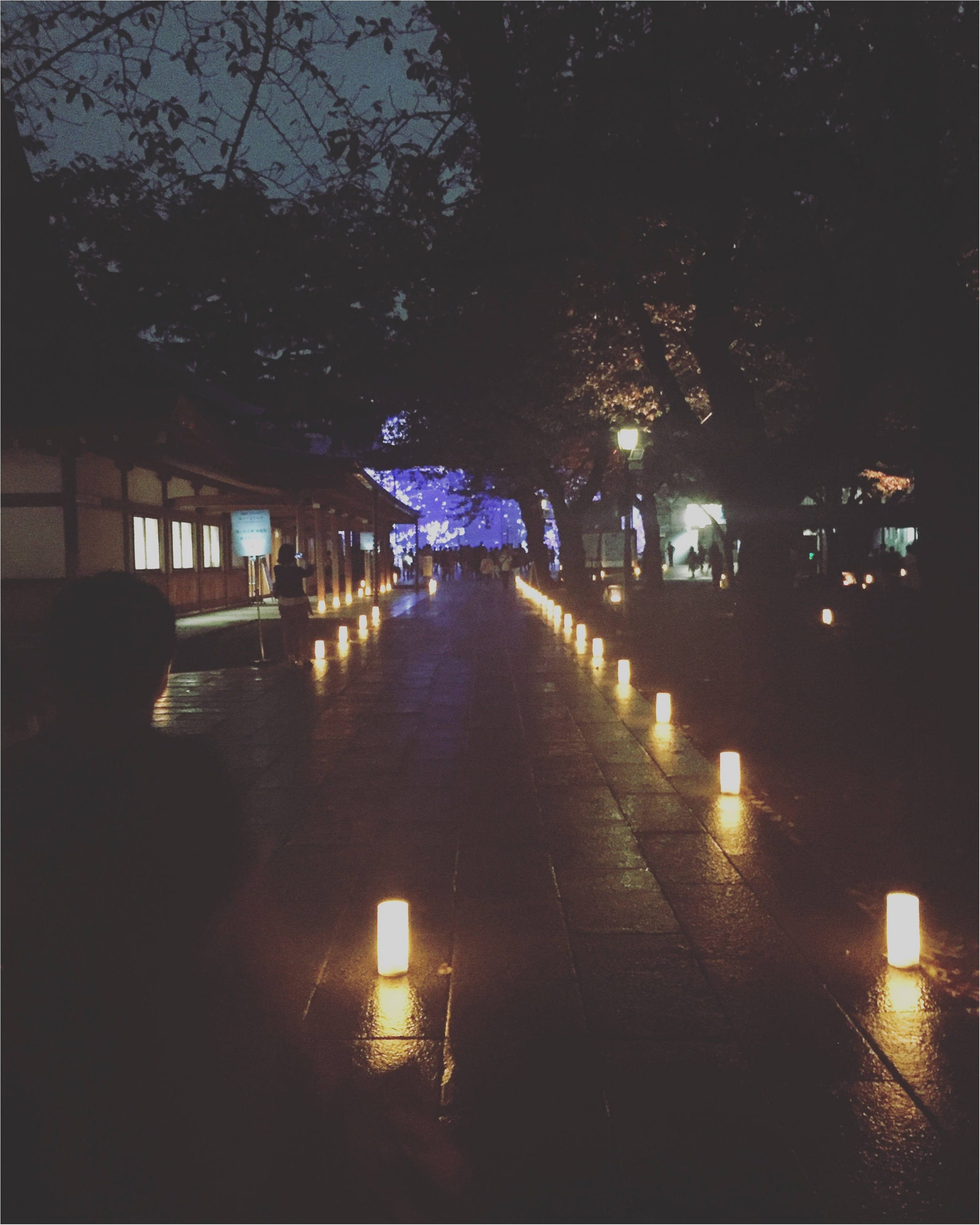 【靖国神社ライトアップ】秋の夜長参拝イベント「みらいとてらす〜秋を彩る九段の光」が幻想的✨プロジェクションマッピングも!≪samenyan≫_6