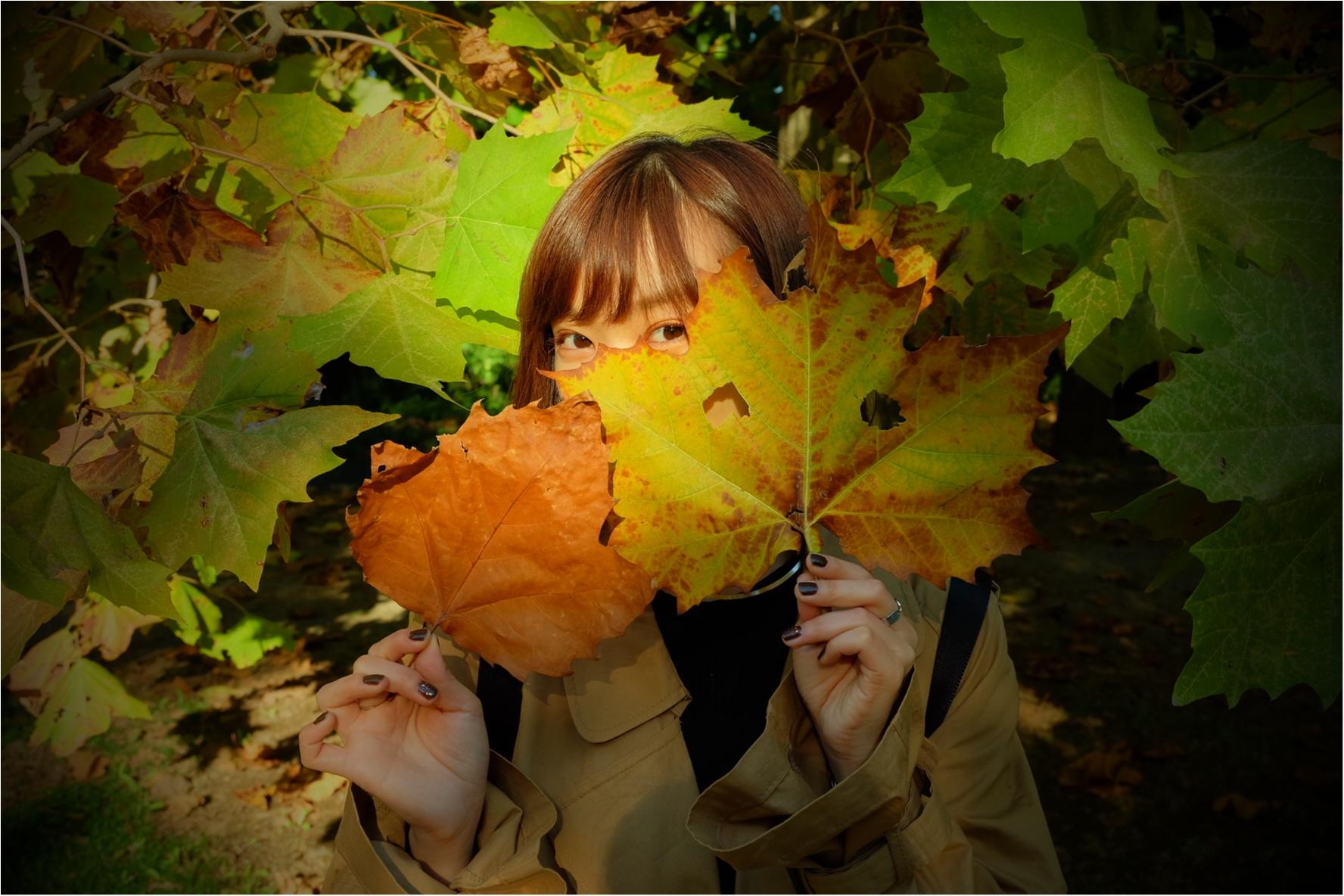 東京でも絶景の紅葉が!《新宿御苑》で秋が始められますよ〜!!フォトスポット&コーディネートも合わせてご紹介!_6