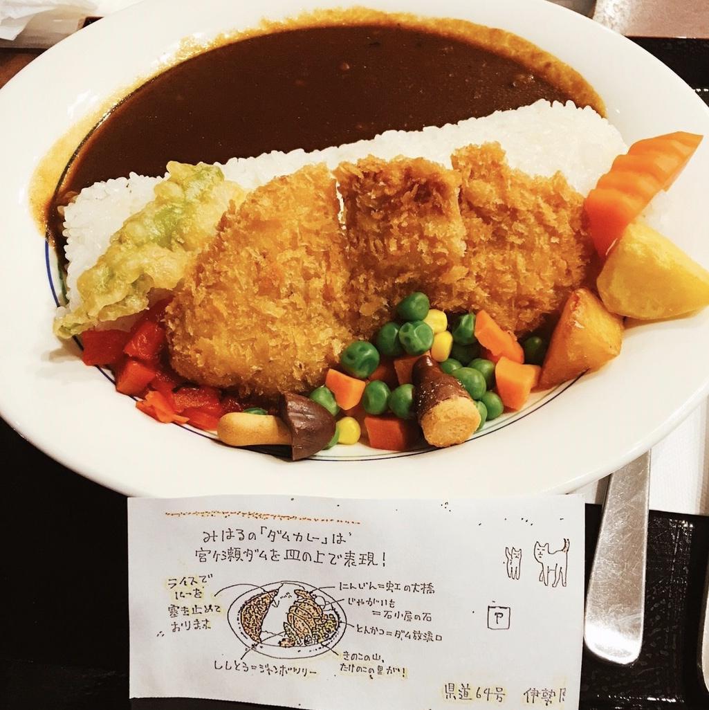 ★✳︎Xmasにおすすめ✳︎★神奈川県 宮ヶ瀬ダムのイルミネーション!!_4