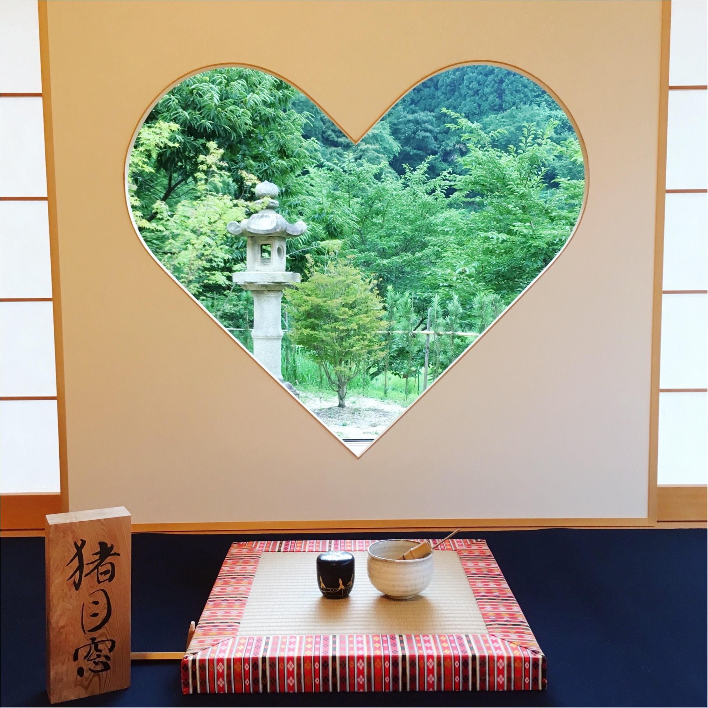 【フォトジェニックすぎる寺院】京都『正寿院』の魅力を紹介しちゃいます♡_2