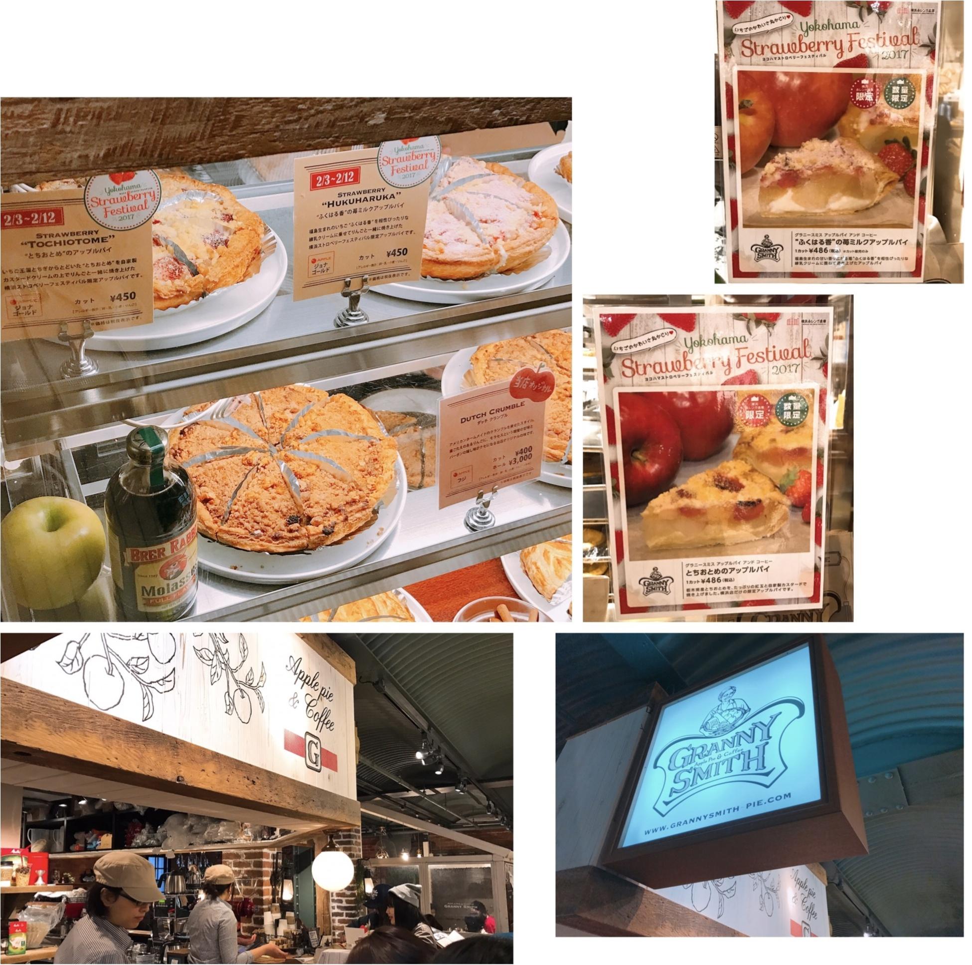 """《昨年22万人以上が訪れた‼︎》赤レンガ倉庫の""""いちごの収穫祭""""【ヨコハマ ストロベリーフェスティバル】が昨年よりパワーアップして開催中♪_6"""