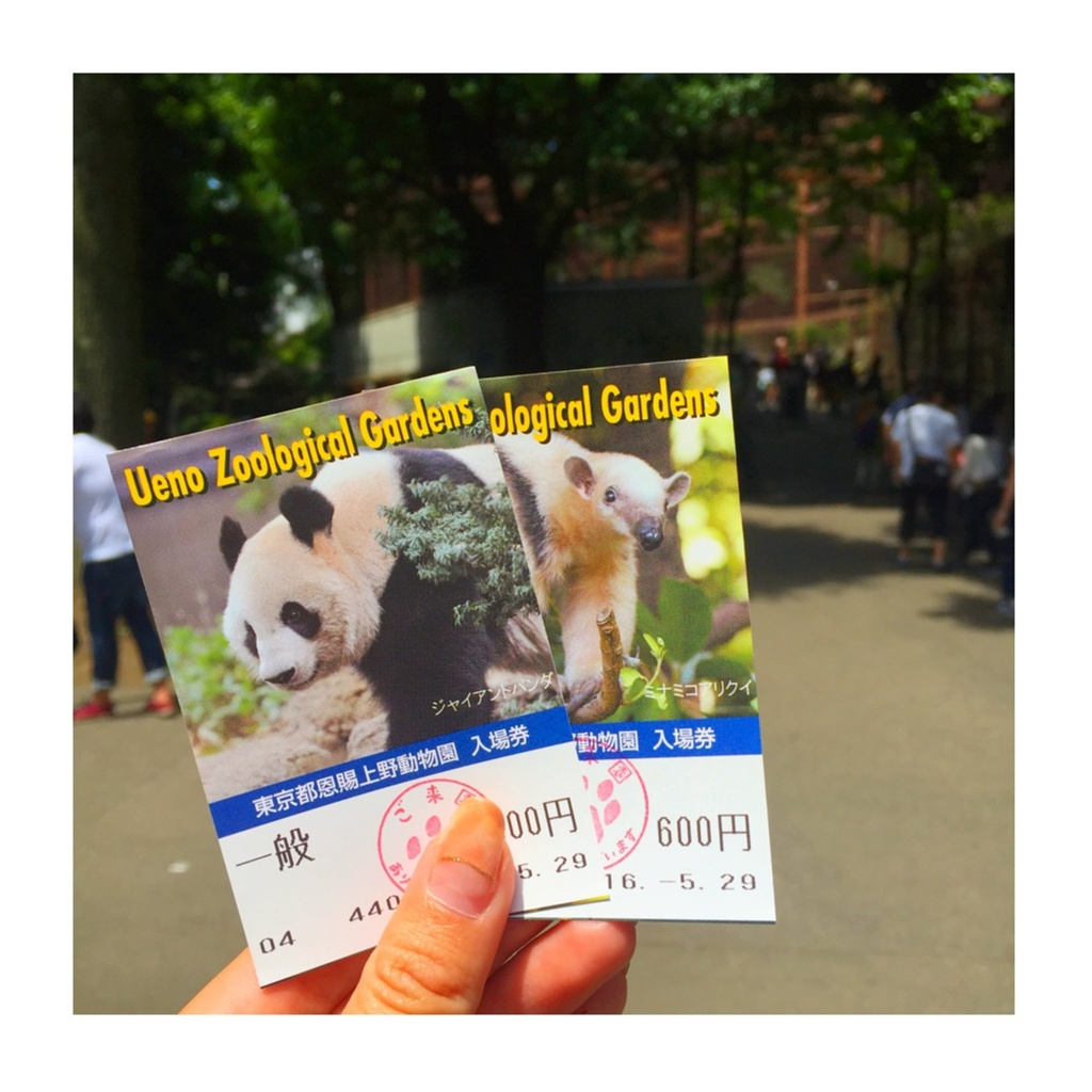 *5月の上野動物園*_2