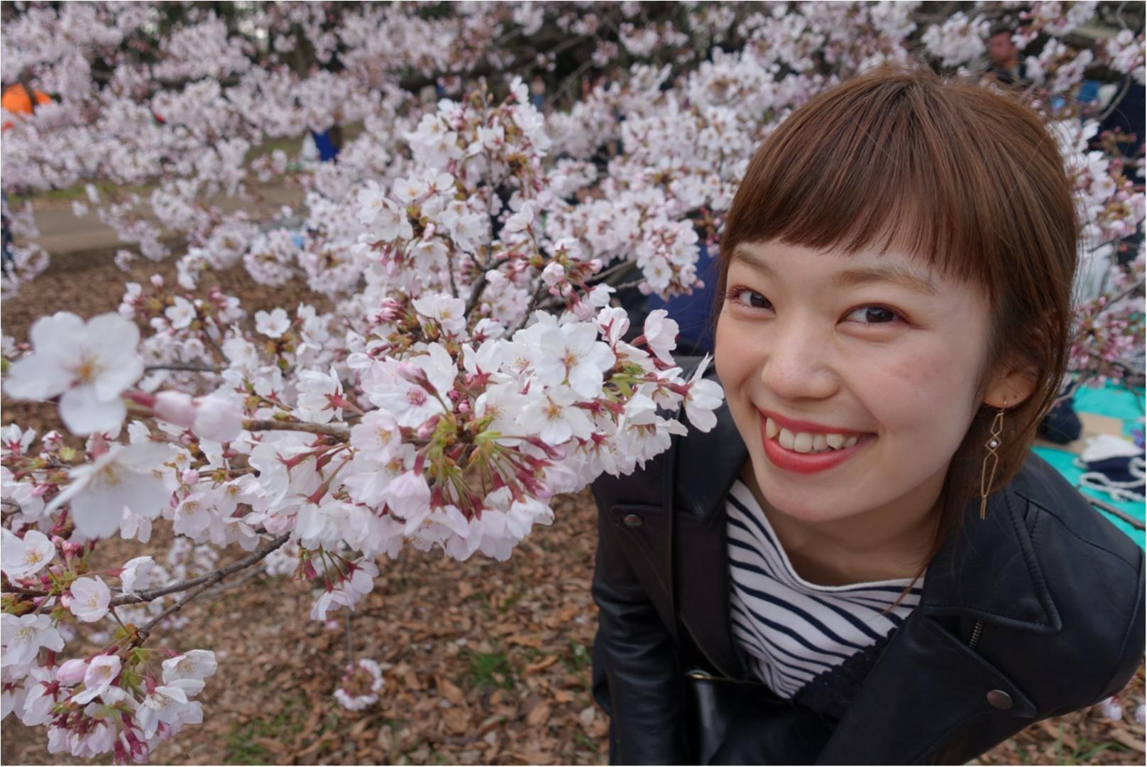 ★まだ間に合う!!昼はココで、夜はココ!東京お花見スポットご紹介!♩_4