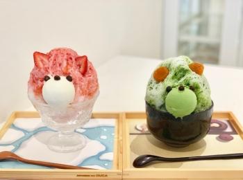 【ご当地MORE❤︎京都】ジャパニーズアイス櫻花の「くまちゃんかき氷」が可愛すぎる♡