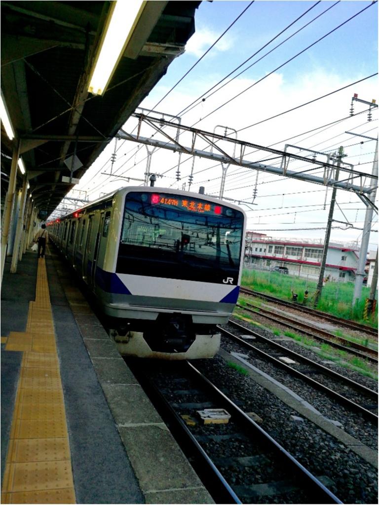 東北18切符ひとり旅①〜東京-仙台編〜_3