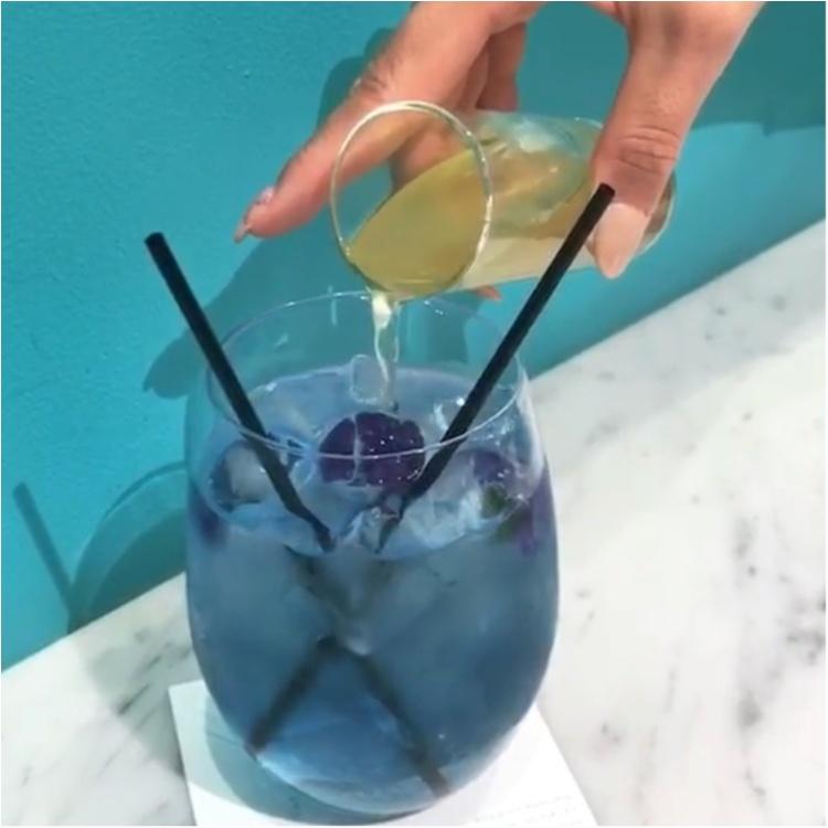 ★ブルー→パープルの変化系ドリンクがあるお店♡大好きな水色がたくさん!『CAMPANELLA CAFE』へ行ってきました★_4