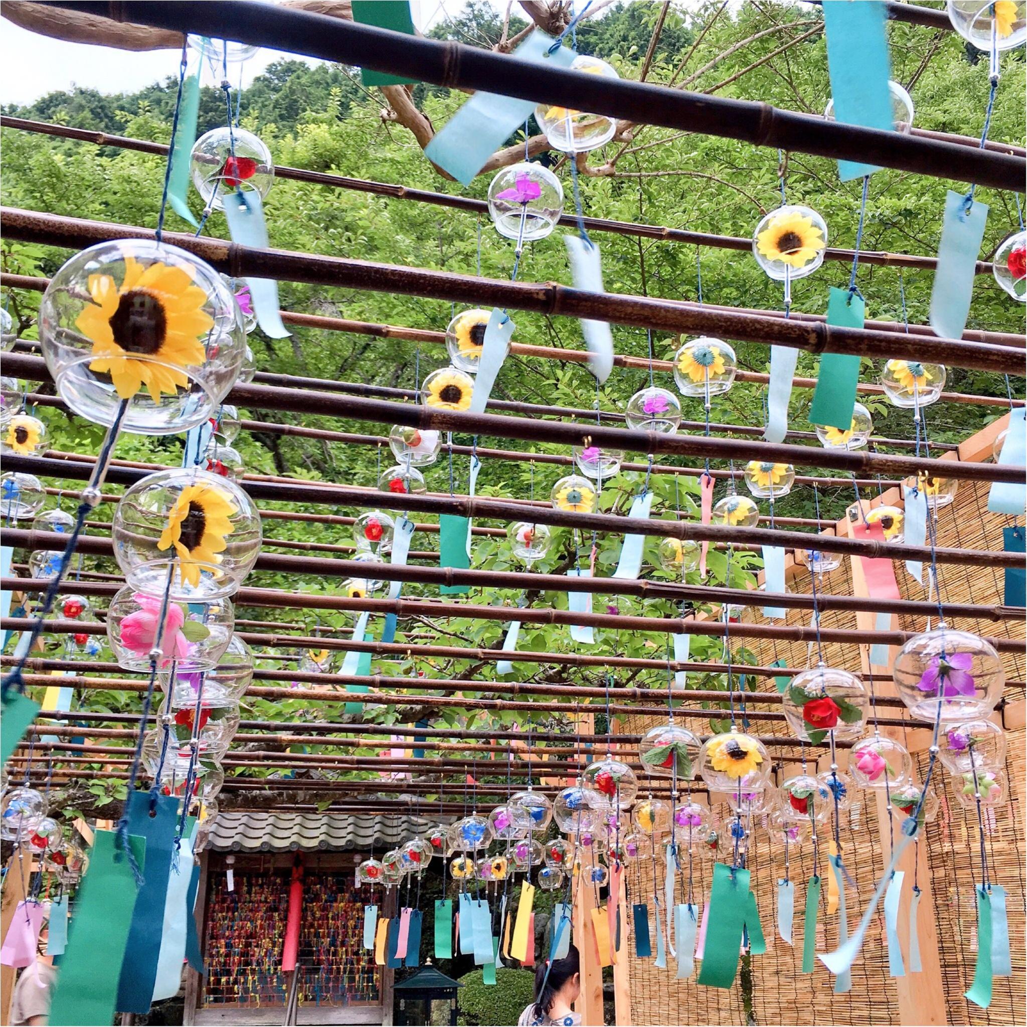 【フォトジェニックすぎる寺院】京都『正寿院』の魅力を紹介しちゃいます♡_11