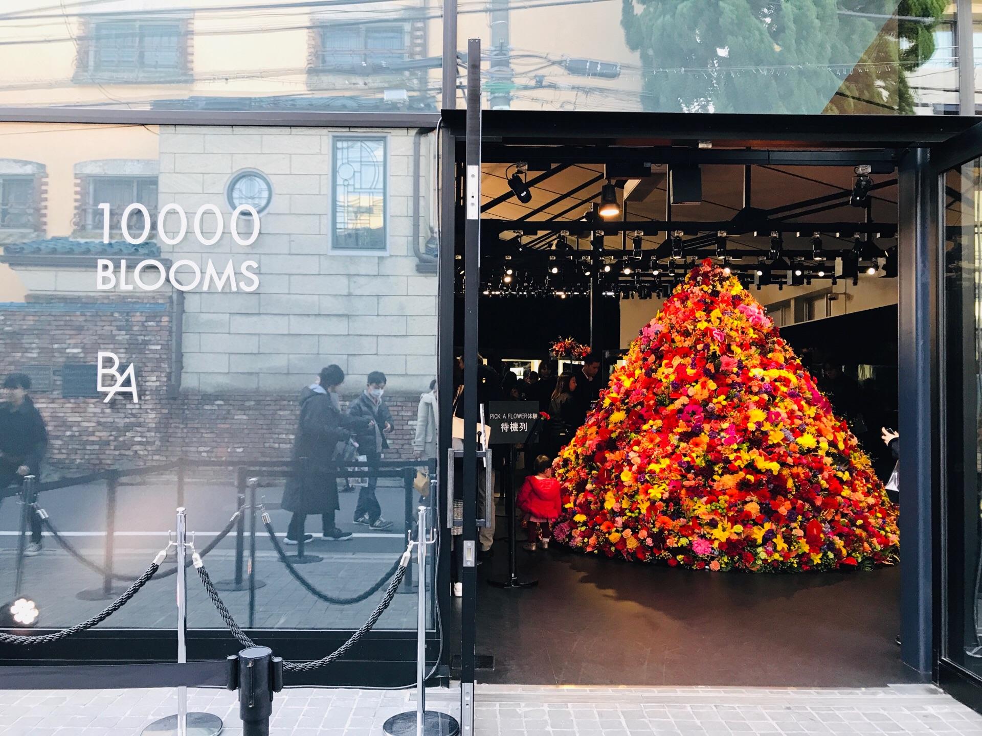 【POLA】1万輪のフラワーツリーがお出迎え!「B.A」体感イベントに行ってきました♡_1