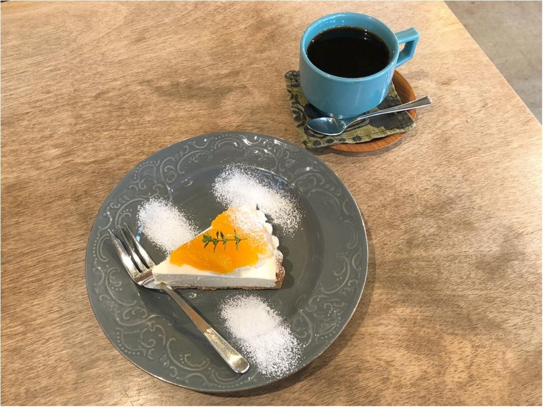 広島で行きたいカフェ♡ 美味しい洋菓子とかわいい雑貨のお店 《 ケツァール 》さんの爽やかオレンジタルト♡♡_9