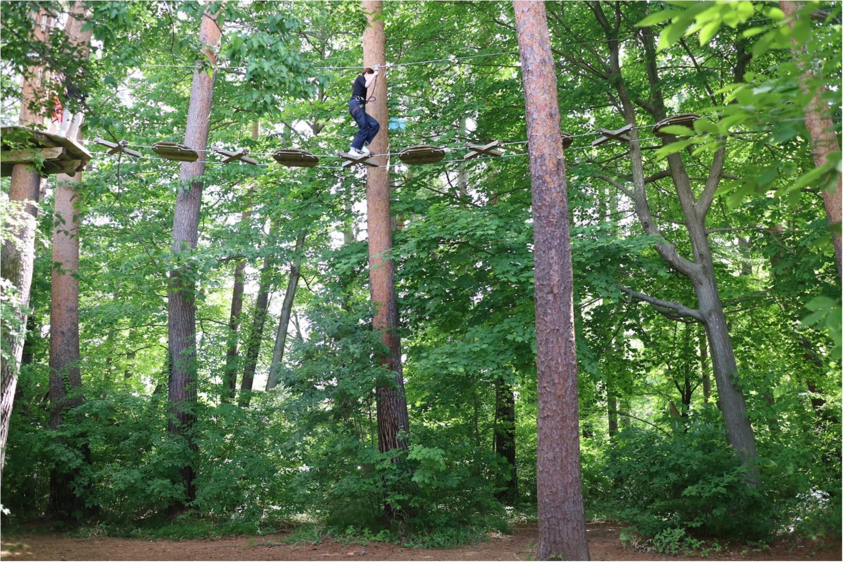 『星野リゾート リゾナーレ八ヶ岳』がリニューアル! 森の中のワインリゾートを体感してきました♡_6