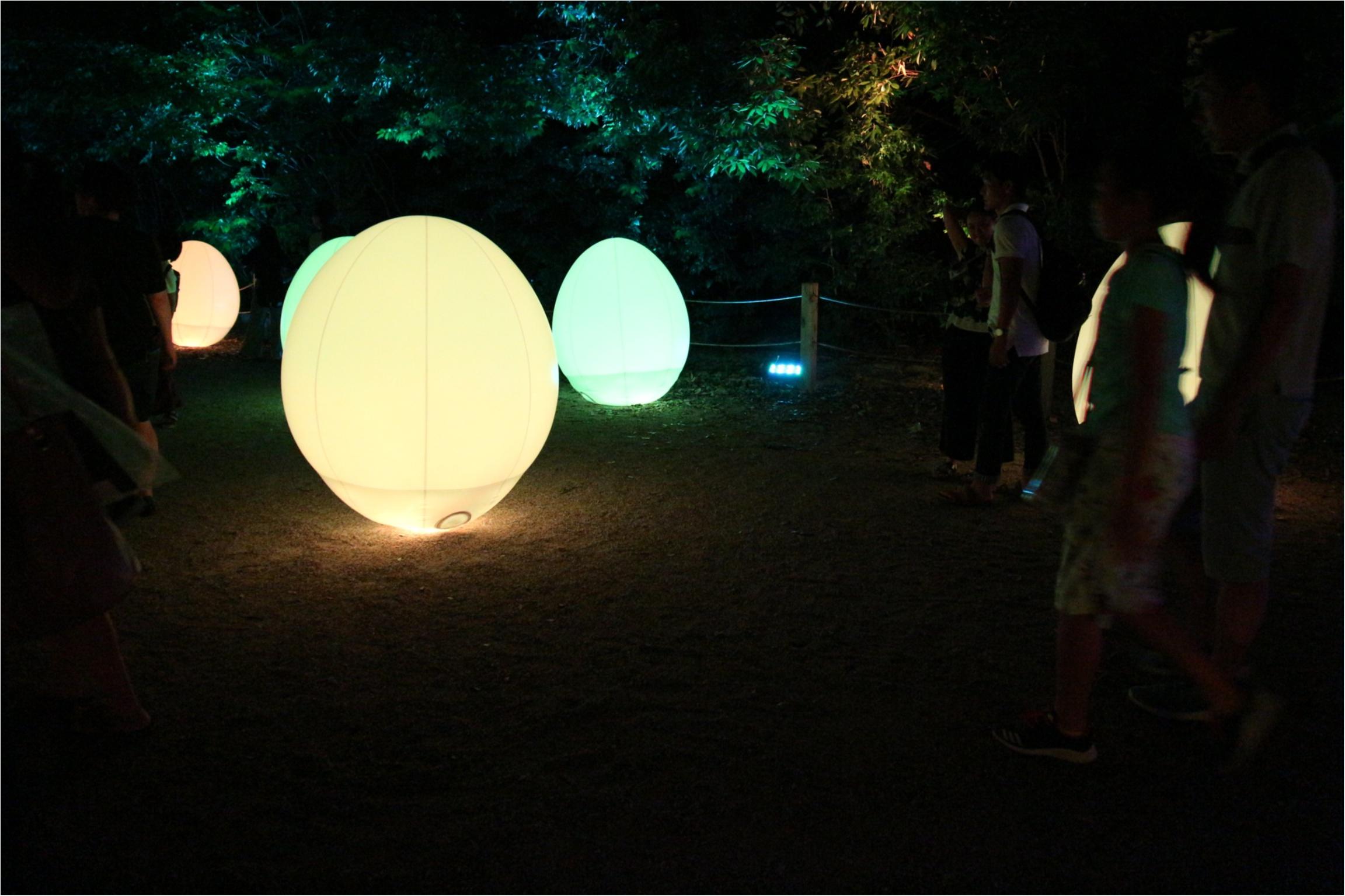 【京都】下鴨神社のライトアップで幻想的な夜を♡_4