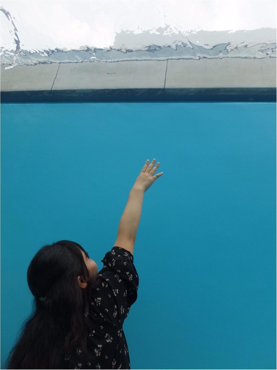 金沢女子旅特集 - 日帰り・週末旅行に! 金沢21世紀美術館など観光地やグルメまとめ_6