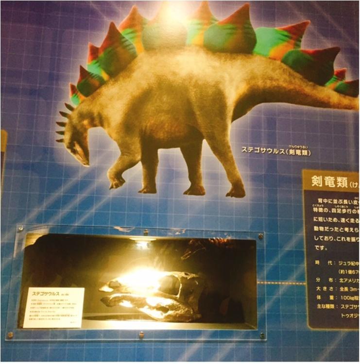 【9/3まで】大人も子供も楽しめる!!大迫力《横浜恐竜展2017》で動く恐竜の森を体験♪_4