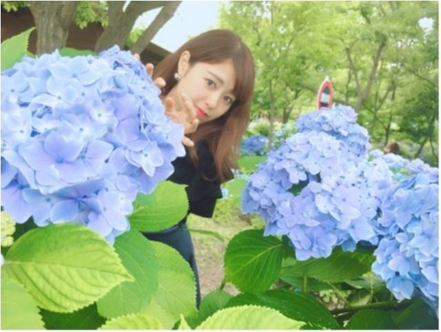 スクープ☆『スタバ』の北海道限定フラペチーノ!! 今週の「ご当地モア」ランキング、エリア別第1位を発表!_3