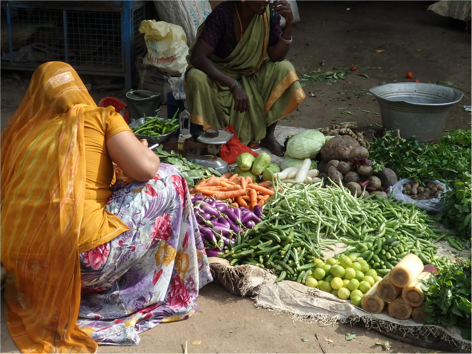 【インド旅】カレーが好きすぎて、本場へ旅してきました♪_1