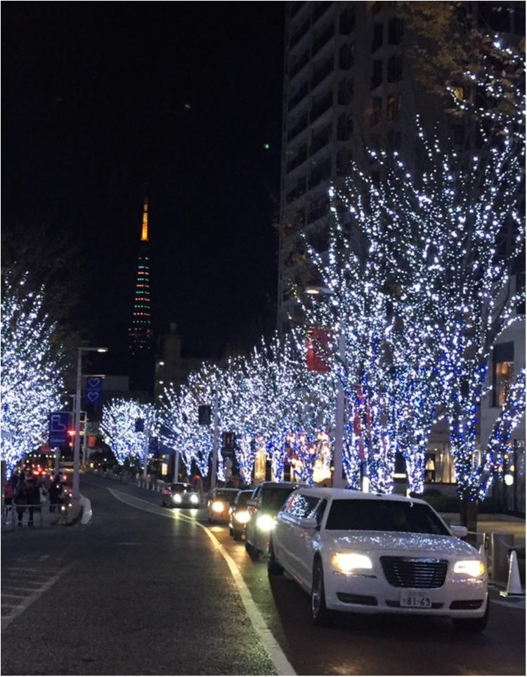 ♡25日クリスマスあなたはどこへ行く?都内のおすすめイルミネーション・クリスマスマーケット♡_6