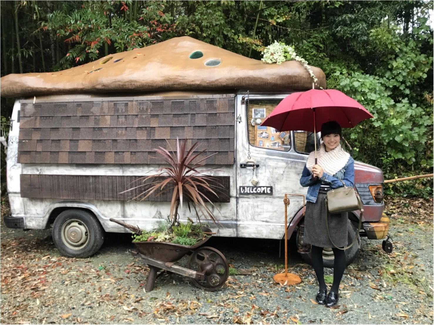 【カフェ巡り】まるでジブリの世界♡フォトジェニックな可愛いスポット『ぬくもりの森』 ~浜松おしゃれカフェ巡り①~_8