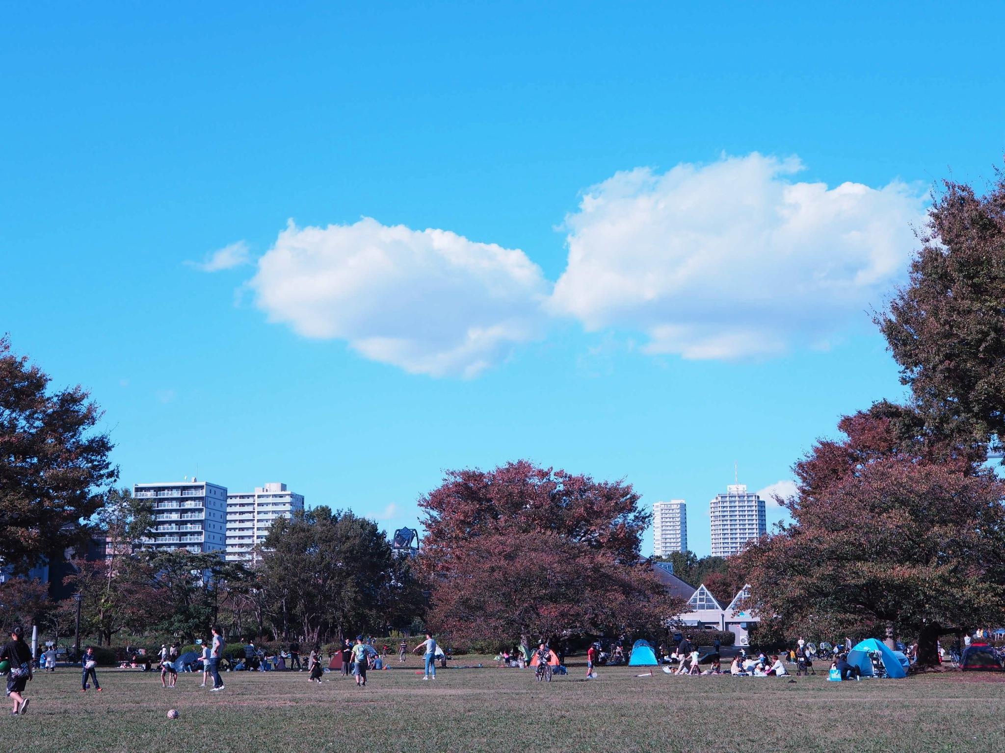 【都内サイング♩】秋晴れの日に #ドコモ・バイクシェア でお出かけしてみた♡_5