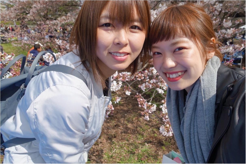 ★まだ間に合う!!昼はココで、夜はココ!東京お花見スポットご紹介!♩_3