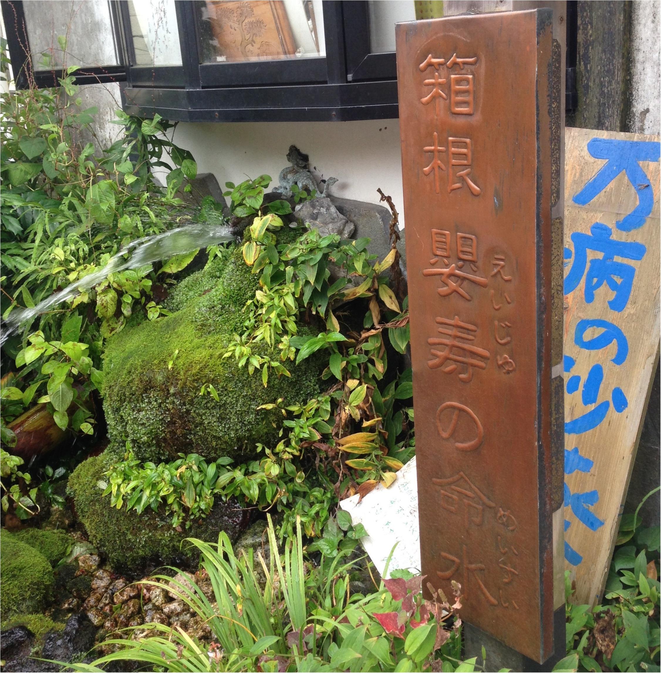いざ、参らん!箱根のパワースポット。縁結びの神&富士山の美味しい湧き水もタダで❤️_3