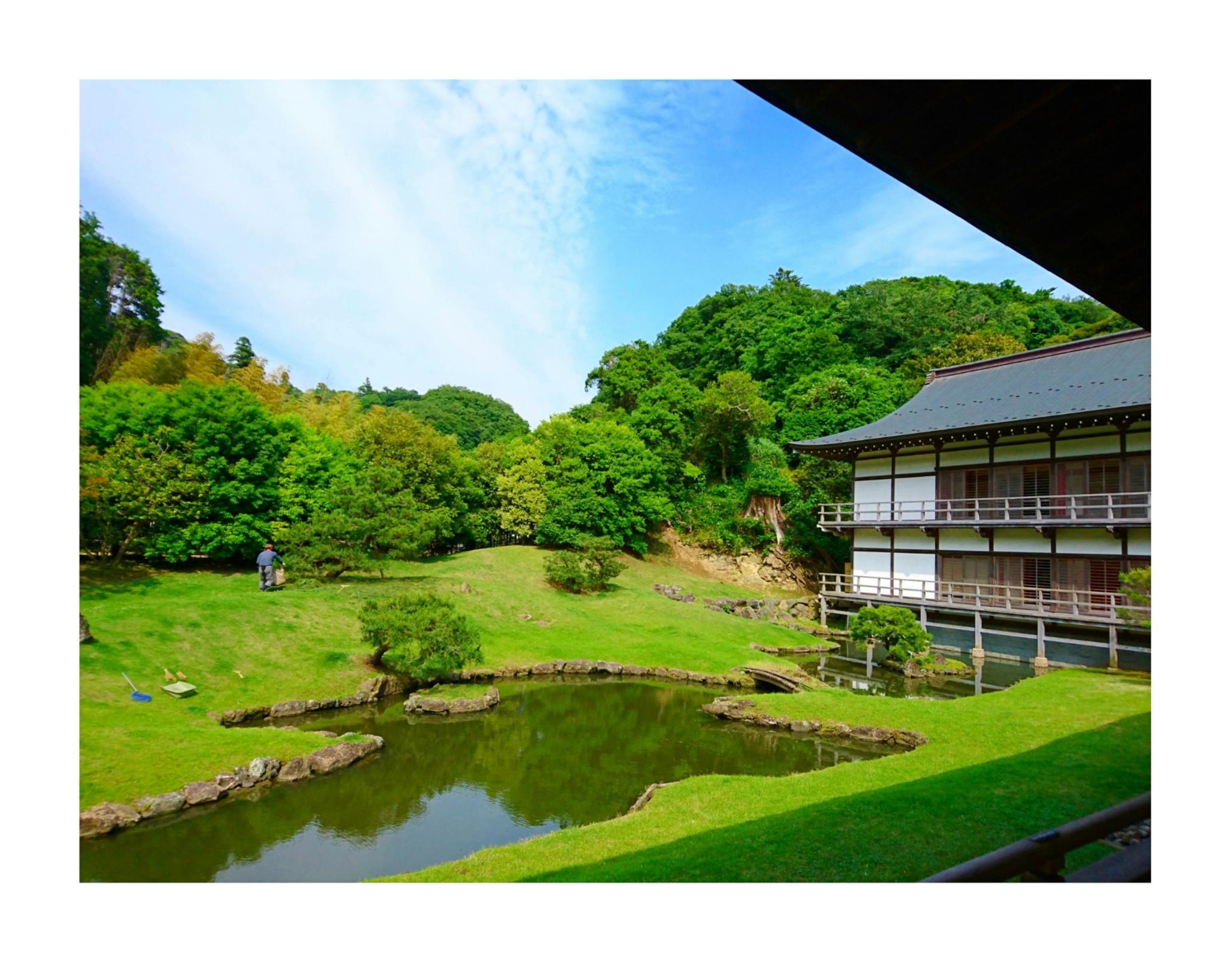 【散策】新緑が美しいこの季節は、鎌倉がおすすめ! ~ 紫陽花が見頃です ~  _3