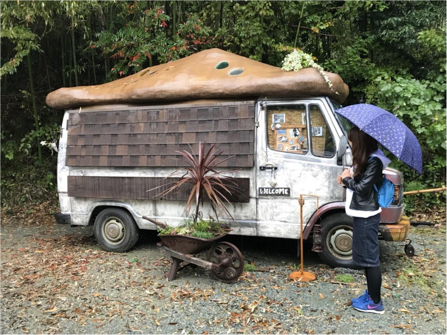 【カフェ巡り】まるでジブリの世界♡フォトジェニックな可愛いスポット『ぬくもりの森』 ~浜松おしゃれカフェ巡り①~_7
