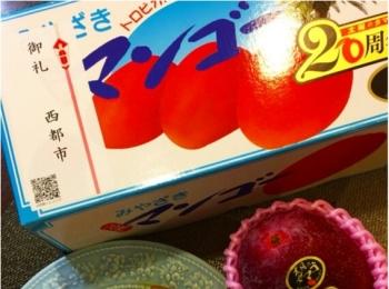 【ふるさと納税】私は、憧れの!太陽のタマゴを貰いました!
