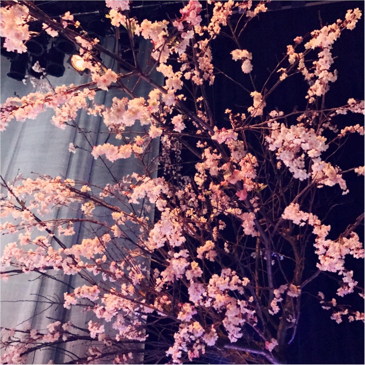 日本で一番早いお花見を、日本橋で。【FLOWERS by NAKED(フラワーズバイネイキッド)】レポ❤︎_1